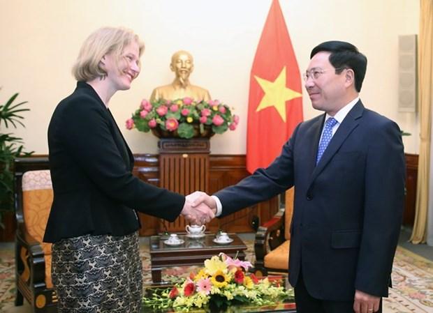 Le vice-Premier ministre Pham Binh Minh recoit l'ambassadrice de Nouvelle-Zelande hinh anh 1