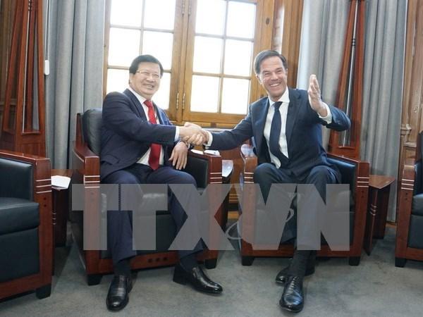 Le Vietnam est partenaire important des Pays-Bas en Asie du Sud-Est hinh anh 1