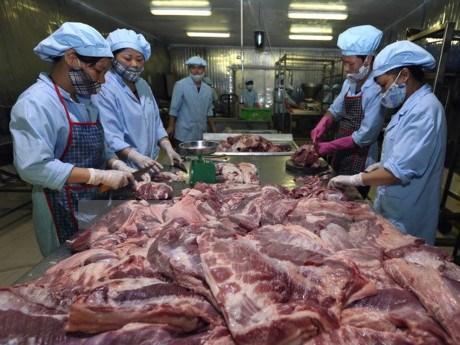 Filiere porcine : le Vietnam s'interesse aux experiences danoises hinh anh 1