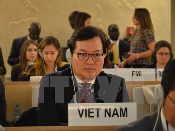 Vietnam-ONU, un modele de cooperation pour le developpement hinh anh 2