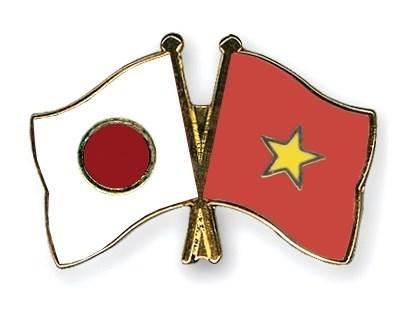 Ho Chi Minh-Ville appelle a l'investissement japonais hinh anh 1