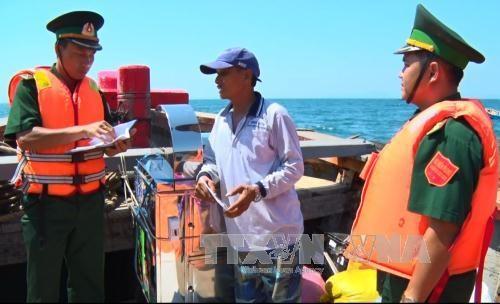 Le Vietnam agit contre la peche illegale dans les eaux etrangeres hinh anh 1