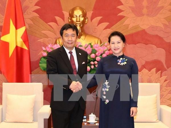 Le Vietnam attache de l'importance aux relations avec le Japon hinh anh 1