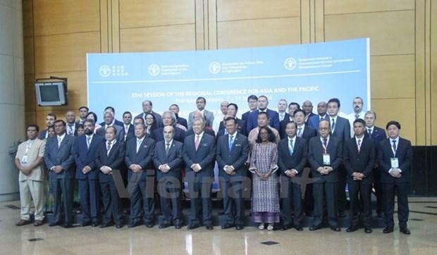 Vietnam-ONU, un modele de cooperation pour le developpement hinh anh 1