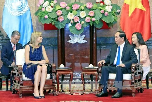 Le president Tran Dai Quang recoit la reine des Pays-Bas hinh anh 1