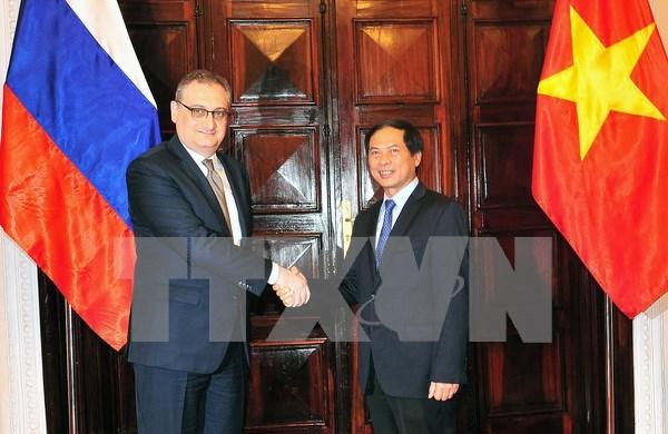 Vietnam et Russie tiennent leur 9e dialogue strategique et leurs consultations politiques hinh anh 2