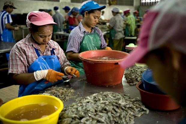 La Thailande durcit les regles contre les travailleurs etrangers en situation irreguliere hinh anh 1