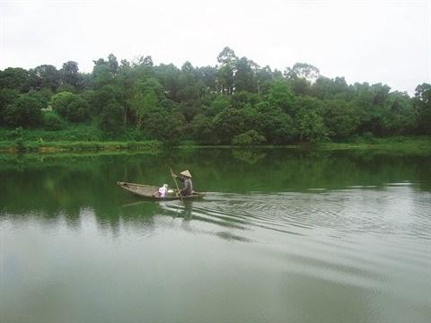 L'intarissable marais d'Ao Chau, une ode a la nature hinh anh 2