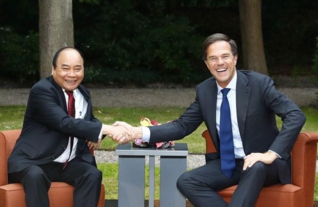 Le Vietnam et les Pays-Bas publient une declaration commune hinh anh 1