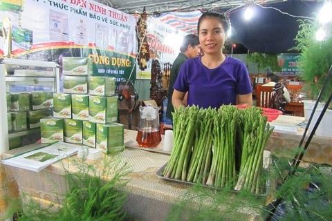 Au Centre, le bon filon des plantations d'asperges a Ninh Thuan hinh anh 2