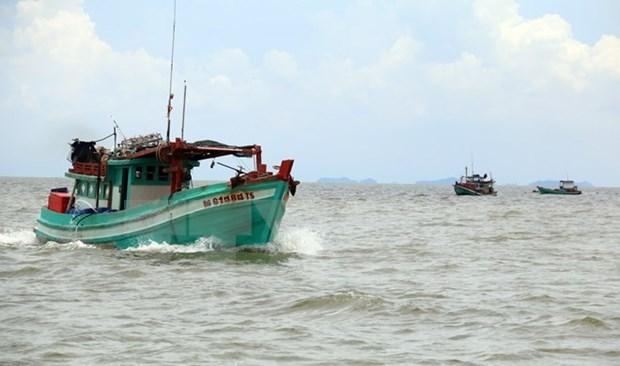 Le Vietnam proteste fortement contre l'usage de la force contre ses pecheurs hinh anh 1
