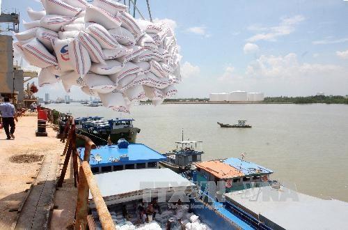 Le Vietnam fournira 175.000 tonnes de riz aux Philippines hinh anh 1