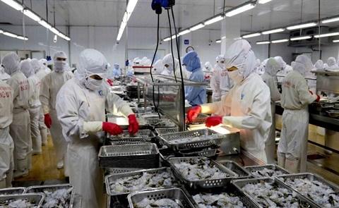 Integration economique : le Vietnam a-t-il bien saisi les opportunites ? hinh anh 2