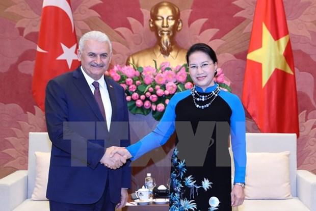 Le Vietnam et la Turquie veulent booster leurs liens hinh anh 2