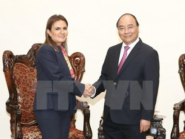 Promotion de la cooperation Vietnam-Egypte dans le commerce et l'investissement hinh anh 1