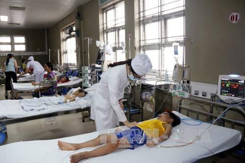 La dengue est de plus en plus maitrisee hinh anh 1