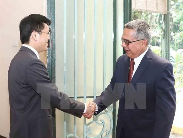 Une delegation du ministere cubain des AE au Vietnam hinh anh 1