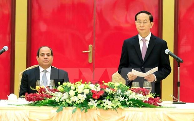 Le president Tran Dai Quang affirme les liens etroits entre le Vietnam et l'Egypte hinh anh 1