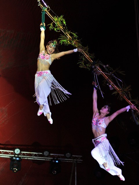 Quand le cirque vietnamien fait son show a l'etranger hinh anh 1
