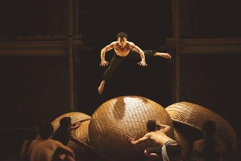 Quand le cirque vietnamien fait son show a l'etranger hinh anh 2