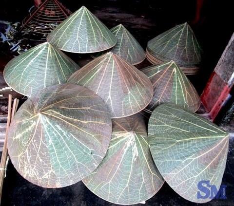 Les chapeaux coniques, charme iconique de Hue hinh anh 3