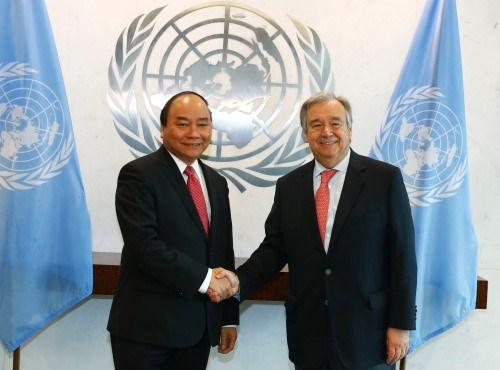 Entre le Vietnam et l'ONU, quatre decennies de cooperation hinh anh 2