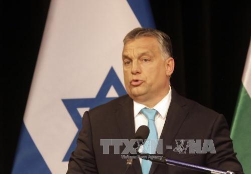 Vietnam et Hongrie cherchent a renforcer la cooperation multiforme hinh anh 1