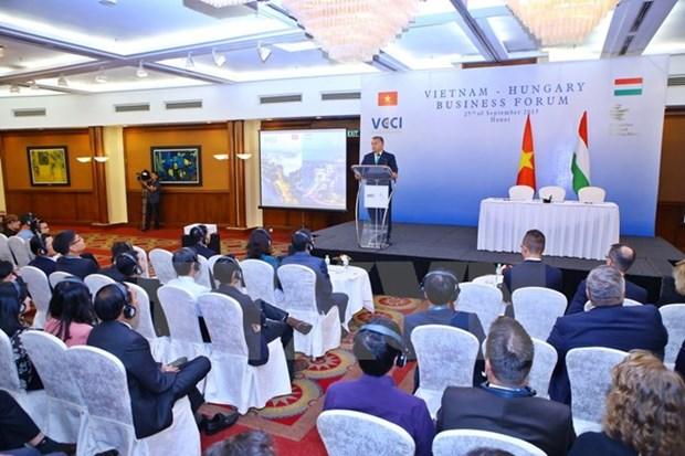 Forum d'entreprises Vietnam-Hongrie a Hanoi hinh anh 1