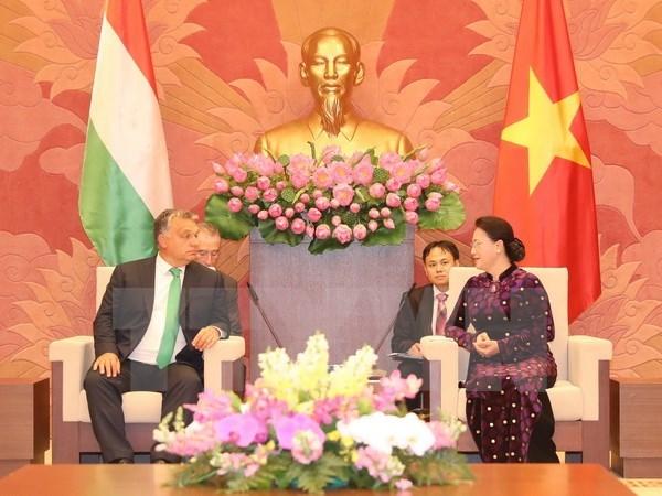 Des dirigeants vietnamiens recoivent le Premier ministre hongrois hinh anh 3