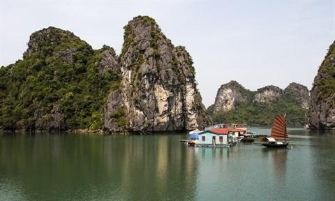 Baie de Ha Long : arret de la peche dans la zone centrale hinh anh 2