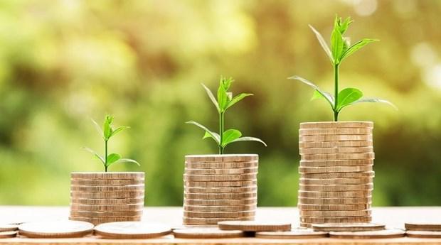Deux start-ups vietnamiens recoivent des capitaux etrangers hinh anh 1