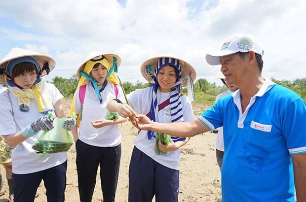 Le Vietnam vise un million de visiteurs japonais en 2018 hinh anh 1