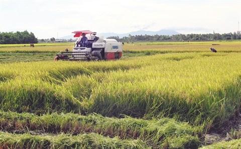 Des engagements forts pour epauler le delta du Mekong hinh anh 3