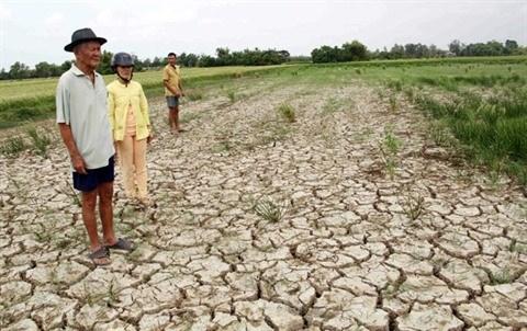 Le delta du Mekong a l'epreuve des changements climatiques hinh anh 3