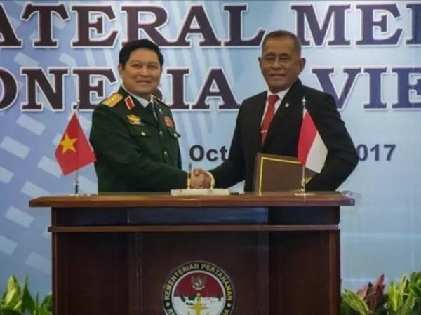 Vietnam-Indonesie : declaration sur la vision commune de la cooperation dans la defense hinh anh 1
