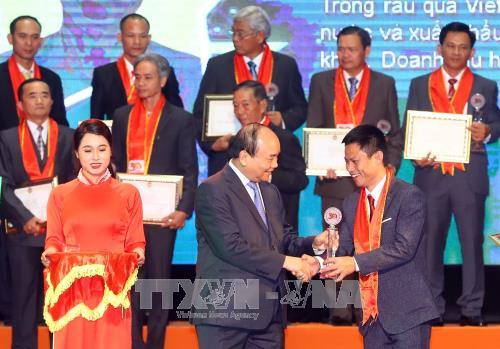 Le chef du gouvernement salue le talent, la creativite des agriculteurs vietnamiens hinh anh 2