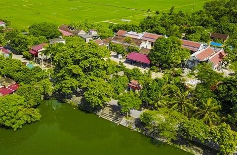 Ninh Binh renforce le programme d'edification de la nouvelle ruralite hinh anh 1