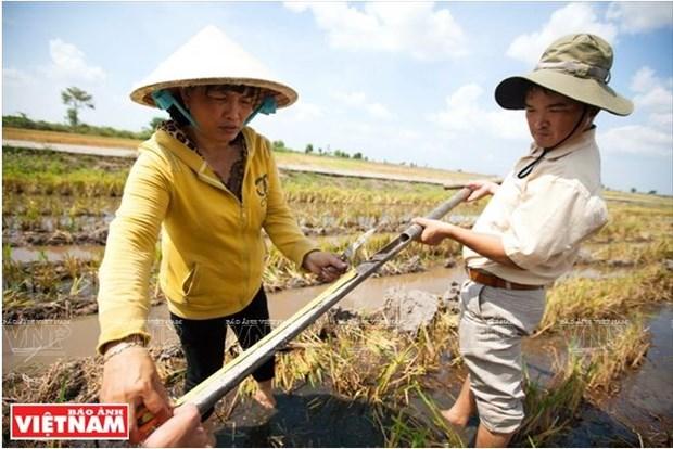 La Plaine des joncs releve le defi de l'agriculture durable hinh anh 3
