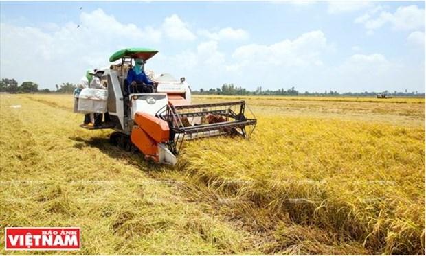 La Plaine des joncs releve le defi de l'agriculture durable hinh anh 5