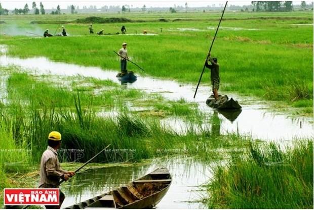 La Plaine des joncs releve le defi de l'agriculture durable hinh anh 2