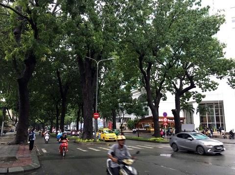 Mesure et gestion de la qualite de l'air a Hanoi au menu d'un atelier hinh anh 2