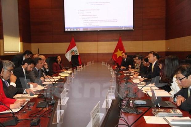 La premiere reunion du Comite intergouvernemental Perou-Vietnam hinh anh 1