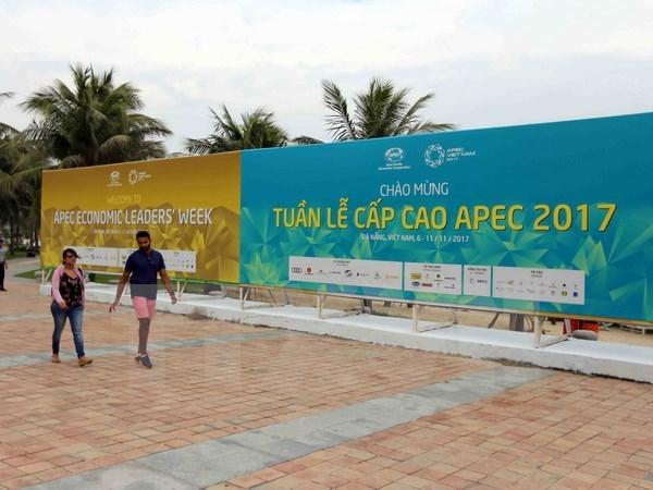 La presse japonaise presente le Vietnam, pays d'hote de l'APEC 2017 hinh anh 1