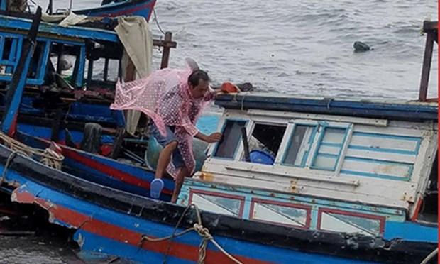 Le typhon Damrey ravage des localites au Centre hinh anh 1