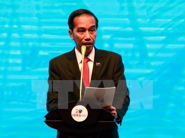 Le president indonesien participera au sommet des dirigeants economiques de l'APEC 2017 hinh anh 1