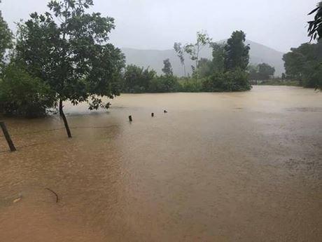 Front de la Patrie du Vietnam : trois milliards de dongs accordes aux sinistres du Centre hinh anh 1