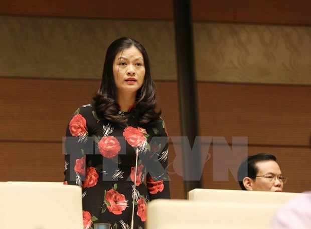 Les deputes debattent de la lutte anti-corruption hinh anh 1