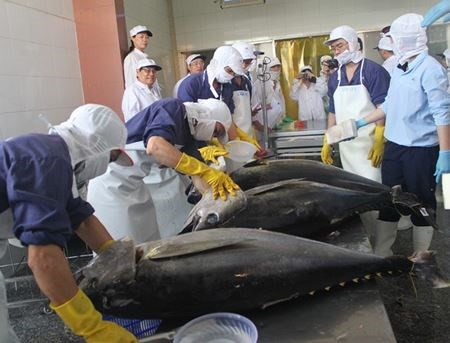 Les exportations de thon au Moyen-Orient poursuivent sur leur lancee hinh anh 1