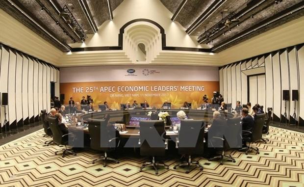 Ouverture de la 25e Conference des dirigeants economiques de l'APEC hinh anh 1