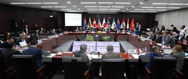 APEC 2017: la Chine affirme que l'accord TPP n'aura pas d'impact sur RCEP hinh anh 1